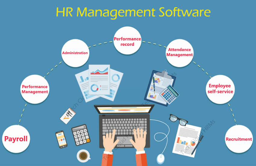 best-hr-management-software-in-india
